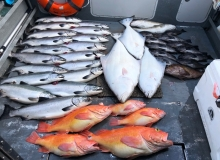 Multi Species Charter in Whittier Alaska