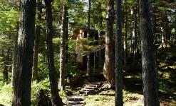 Rental Cabins in Prince William Sound Alaska